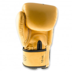 Boksehandsker - Fairtex - BGV1 Falcon Limited Edition