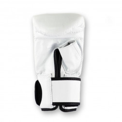 bag gloves - Fairtex - 'TGO3' - White
