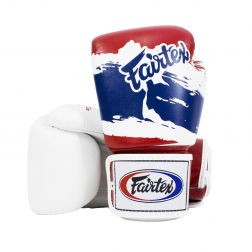 boxing gloves - Fairtex - 'BGV1' - Thai Flag
